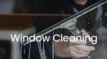 Shine window washer cleaning interior window